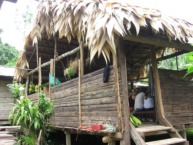 The BriBri people have lived in the jungle in this area for millenia and have discovered how to live in harmony with nature.