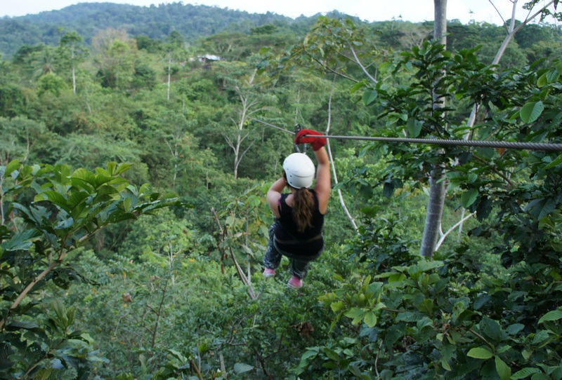 Zipline tours through the jungle canopy are an exciting way to see nature and give you a unique viewpoint from up in the trees.