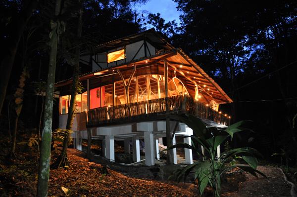 El arbol casas en la jungla for Hotel con casas colgadas de los arboles